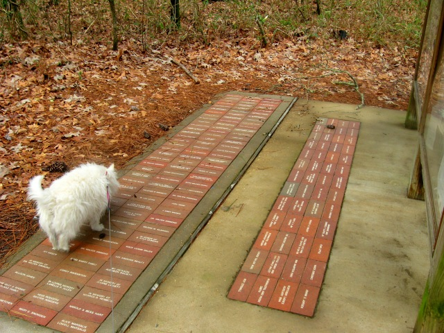Somebody's going to be in BIG trouble for carving names in these bricks!