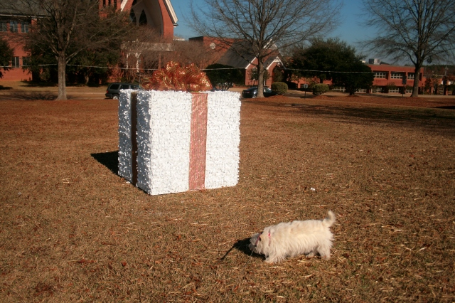 I'll bet that is a present for me!