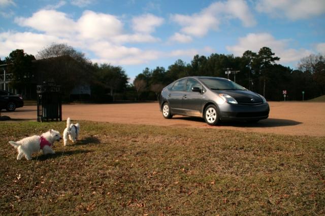 Hybridmobile, we're back!