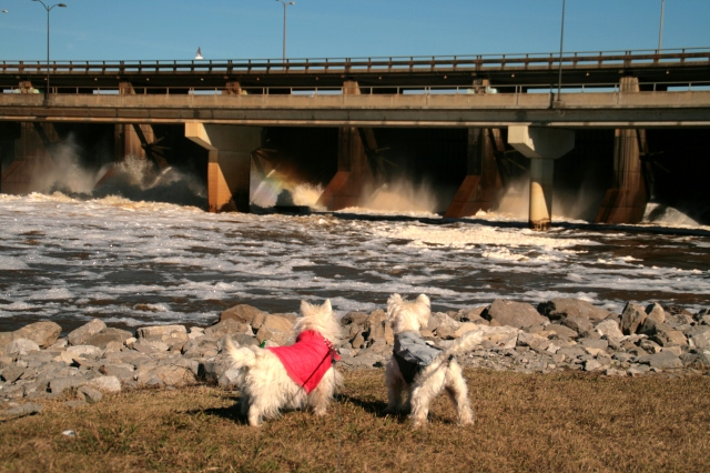 Look, Sunshine, there is a rainbow in your spillway!