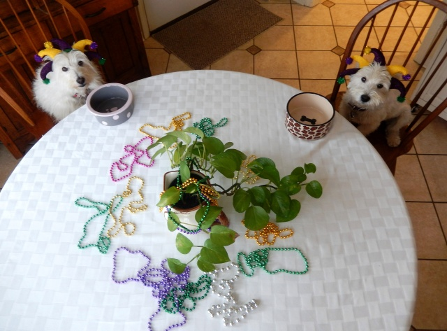 Starlight and I pose for a pre-Mardi Gras lunch photo.