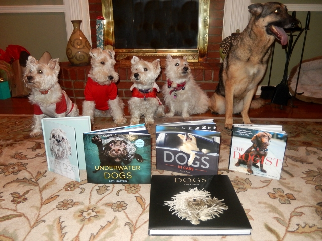 Our pack is posing with some of the thoughtful gifts we received.
