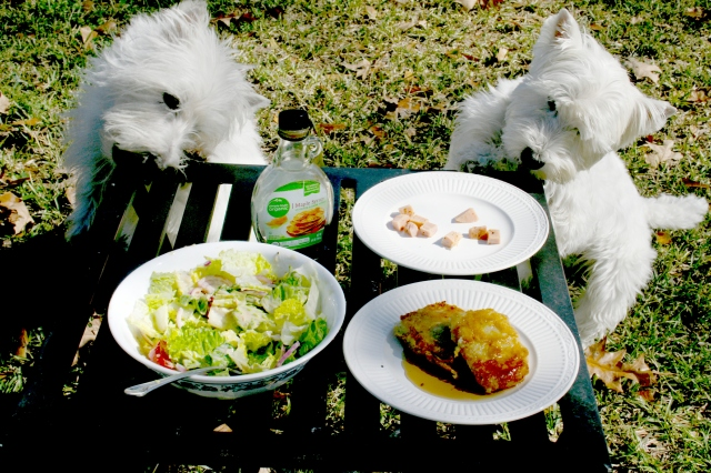 We're chowing down on our ham while my manservant, the rabbit, eats his salad.