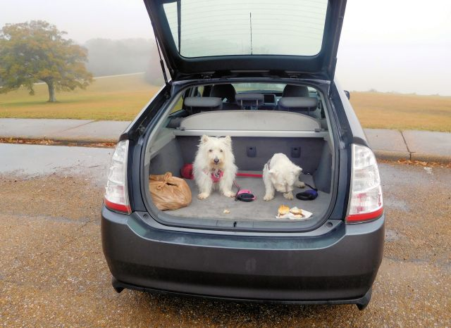 You don't have to eat breakfast in the rain; there's plenty of room in the Hybridmobile's boot.