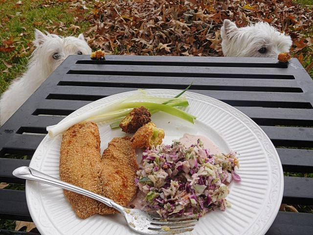 A break in the rain at lunchtime allows us to enjoy catfish, hushpuppies, and coleslaw.  Woo hoo!