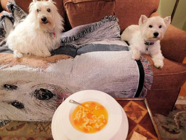 Fetch some more crackers.  It's hard for pooches to eat soup on the Davenport.